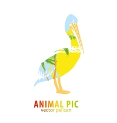 Pelican and palm trees vector