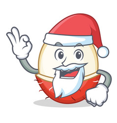 Santa rambutan mascot cartoon style vector