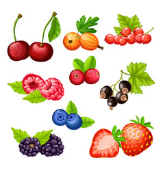 Colorful cartoon berries icons collection vector