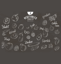 doodle elements of fruit and vegetable hand drawn vector image