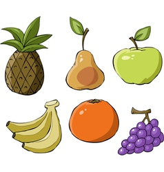 fruit symbol vector image vector image