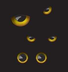 Owl eyes in the dark vector image vector image