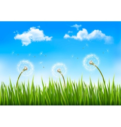 Nature background with dandelions vector