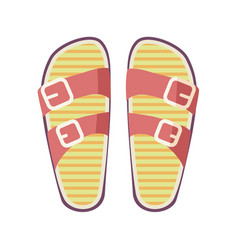 Casual summer flip-flops isolated vector