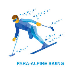 disabled skier running downhill vector image vector image