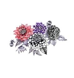 Hand drawing chrysanthemum flowers sketch vector image