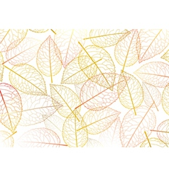 leaf autumn silhouette vector image vector image