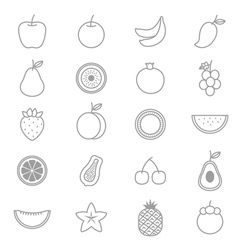 Fruit icons line set vector