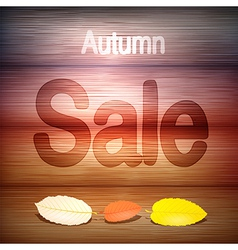 Autumn sale title on wood with leaves vector
