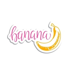 eco friendly banana concept - design vector image vector image