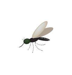 Mosquito on the isolated background vector image vector image