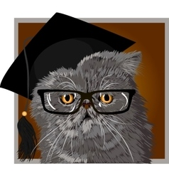 Persian cat with glasses and cap graduate vector