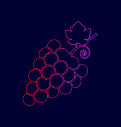 Grapes sign line icon with vector