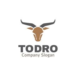 Todro Design vector image vector image