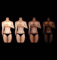 Women bodies templates vector