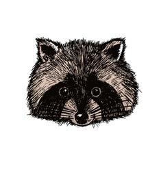 Concept hand drawn cute raccoon design template vector