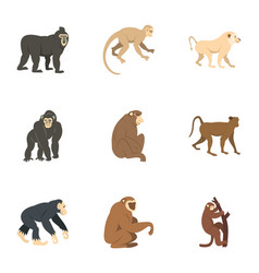 Different monkey icon set flat style vector