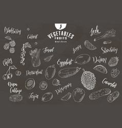 hand drawn vegetables and fruits fresh vector image
