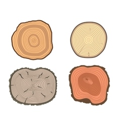 Tree slices set vector image