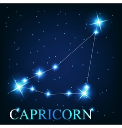 the capricorn zodiac sign of the beautiful bright vector image