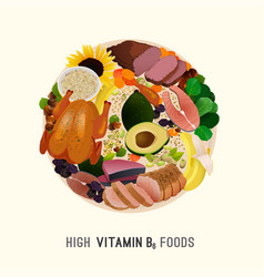 Vitamin b6 foods vector