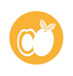 mango fresh fruit isolated icon vector image