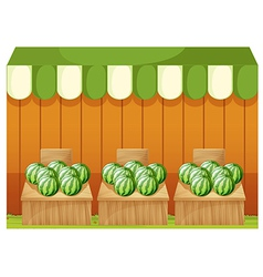 Watermelon fruit stands vector