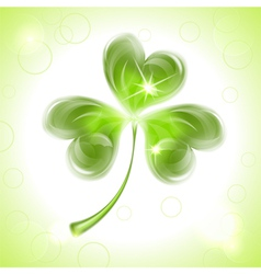 Leaf clover on patricks day vector