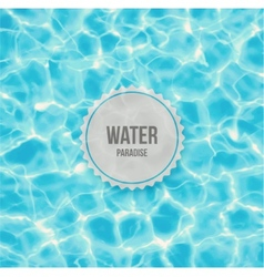 Water paradise vector image
