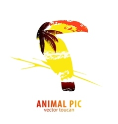 Toucan and palm trees vector