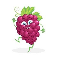 Cute grapes on a white background character vector