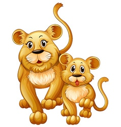 Mother lion and little cub vector