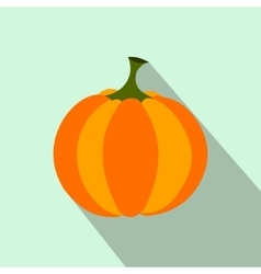 Pumpkin flat icon vector