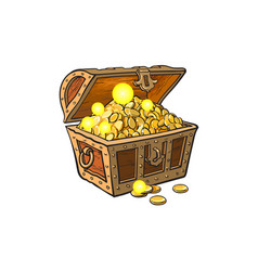 Opened treasure chest full of golden coins vector