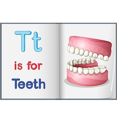 A picture of teeth in a book vector image vector image