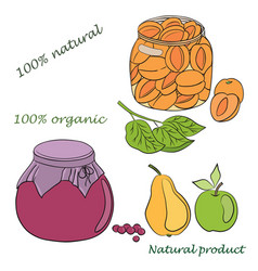 conservation fruits vector image vector image