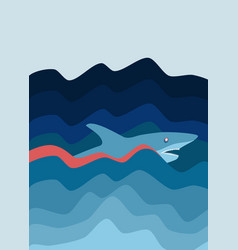 shark attack abstract background vector image