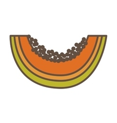 Papaya fresh fruit icon vector