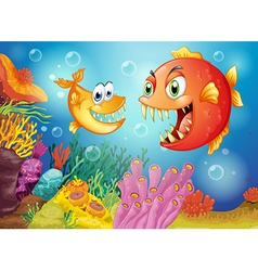Two fishes with big fangs under the sea vector image