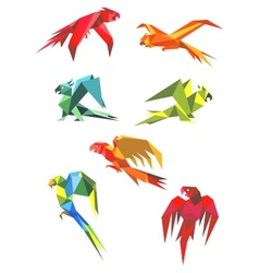 Flying colorful parrots in origami style vector image