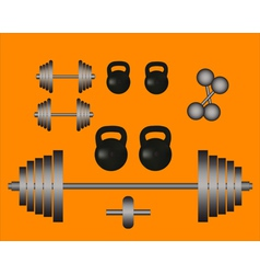 weights barbell dumbbell vector image vector image