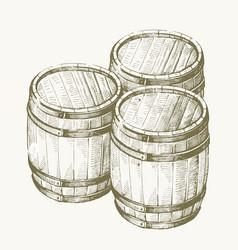 Drawing wood barrel vector