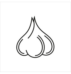 garlic simple icon on white background vector image vector image