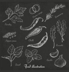 Set of spices in sketch style on black background vector