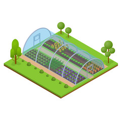 Greenhouse isometric view vector