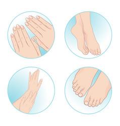 beautiful female hands feet manicure pedicure vector image