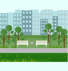 city park view in summer seasons vector image vector image