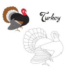 Educational game connect dots to draw turkey bird vector