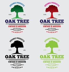 Oak tree logo vol 2 vector