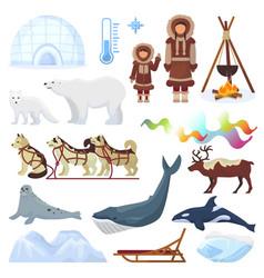 Arctic northern borealis norway and husky vector